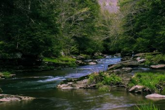 Ankroet Waterfall and the Yellow Stream