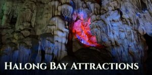 All Halong Bay Attractions, What to Do in Halong Bay