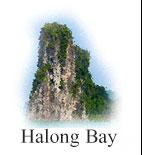 Halong Bay Logo