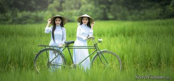 Saigon, Cu Chi, TayNinh, Vinh Long, Can Tho, Cai Rang Floating Market