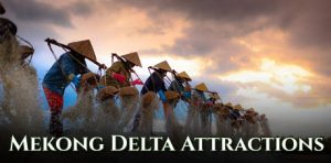 All Mekong Delta Attractions, What to Do in Mekong Delta
