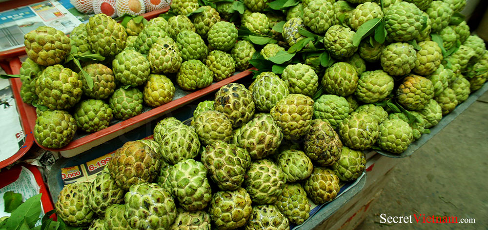 Tropical and Exotic Fruits in the Mekong Delta