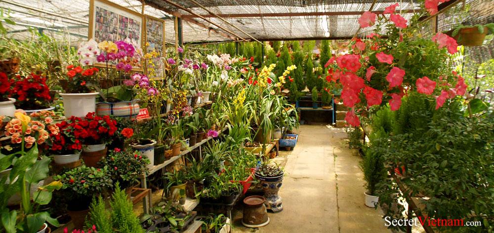 Minh Tam Flower Garden