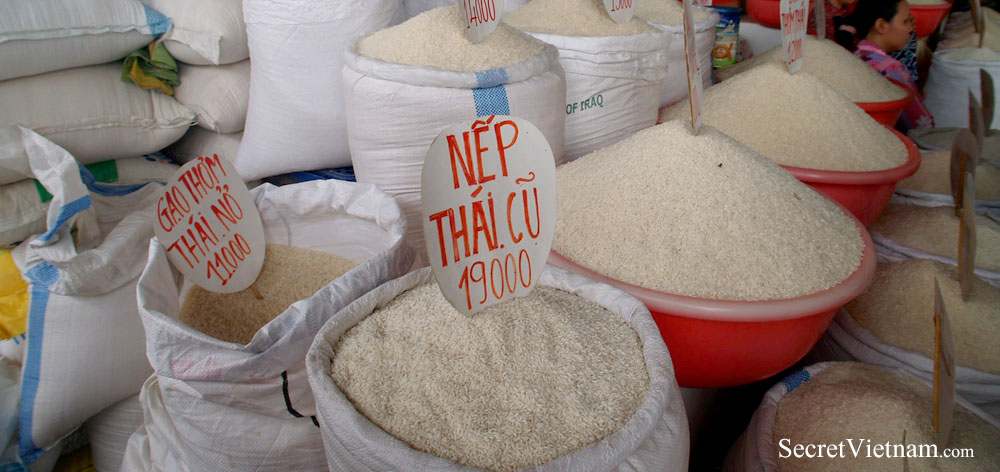 Rice Production in Mekong Delta