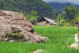 Hanoi – Sapa by Bus in Hotel and Homestay