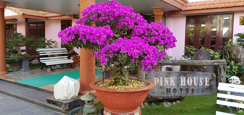 Villa Pink House Dalat
